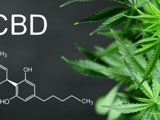 Here we explore what CBD is.
