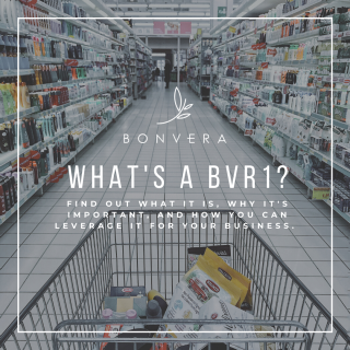 Bonvera business BVr1